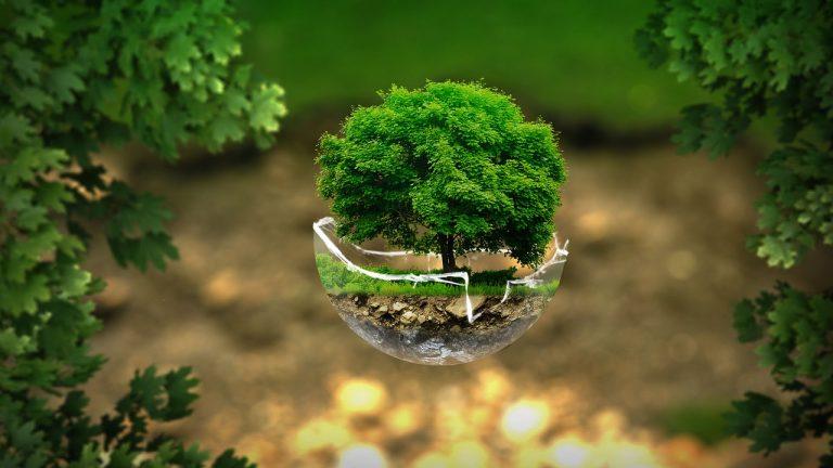 La sublimación digital y su relación con el medio ambiente y el trabajador.